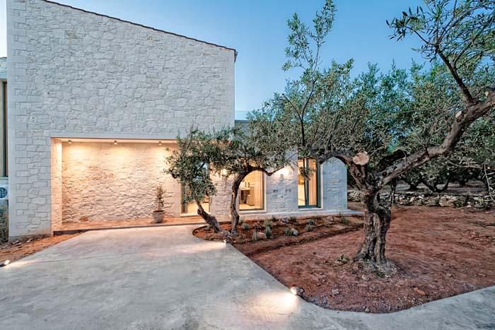 Faidras Olive Grove